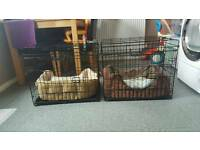 Small dog crates