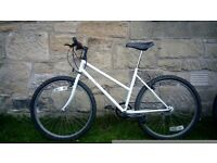 Mountain bike £40 ONO