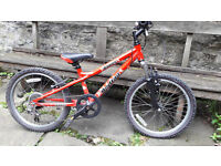 Child's Dawes redtail mountain bike