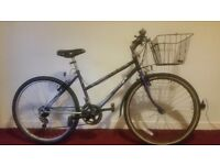 Ladie's Raleigh Mountain Bike with Basket