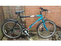 Mens Raleigh Bike
