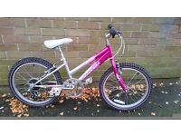 Kids bike. Good condition - just serviced