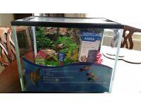 Starter Fish Tank 19ltr & Acessories £10