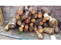 Seasoned Firewood logs £60