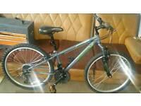 Boys/teen mountain bike