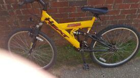 urban heat womens bike