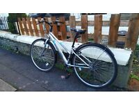 "Apollo Excelle Womens Hybrid Bike 14"" Gray"