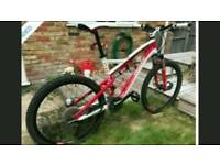 Specialized full suspension mountain bike ....Stolen.....
