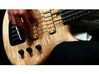 Bass guitar lessons - all levels