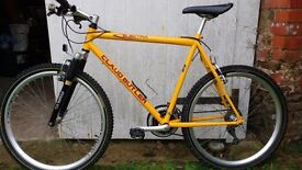 Gents Claud Butler Mountain Bike. Large 22 frame