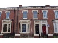 Very spacious self contained bedsit to let on Azalea Terrace North, Ashbrooke, Sunderland