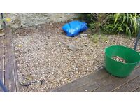 Garden gravel to cover roughly 9 sqm. Collection only.