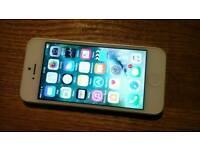 Apple iPhone 5 - White/Silver - 16GB - Unlocked