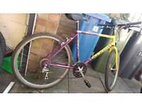 Retro Raleigh mountain bike