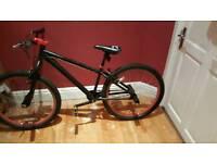 Xrated mesh bike (matt black)