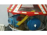Ginger hamster with large cage and all accessories