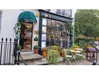 Beauty room to rent in Belgravia