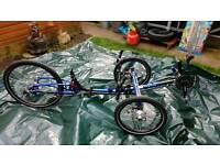 ICE Trike. Brand new with extras