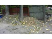 Topsoil free for collection available anytime easy access for loading