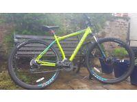 Carrera sulcata 29er mountain bike