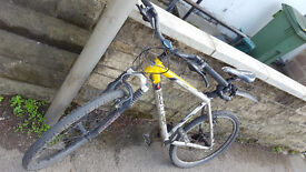 SCOTT USA bike - light frame - with lock and lights!