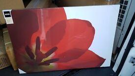 £5·Homebase - Flower Canvas - BRAND NEW!!