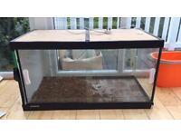 3 ft glass vivarium