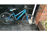 Mens apollo down hill mountain bike