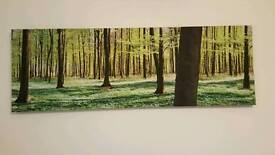 Large picture frame canvas