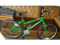 Girls/teenager bike