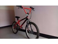 Zombie Snarl BMX Bike