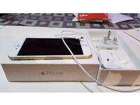 apple I phone 6 plus large