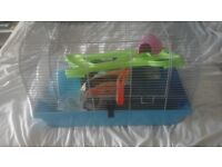 Hamster cage food and accessories
