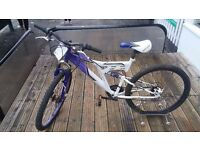 DUNLOP RAIDER Mountain Bike, Fully Serviced, Ready To Ride.