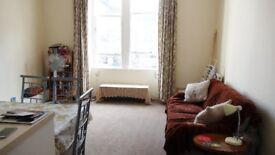 Central spacious & cosy 1 bedroom flat at Meadows near George Square & Kings Buildings