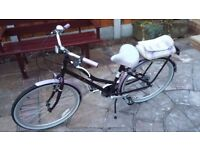 Pendelton Blossomby Girls Bicycle
