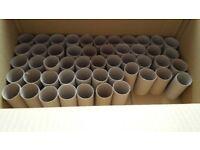clean toilet paper rolls tubes