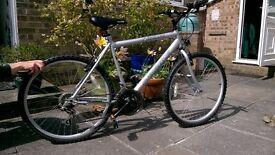 Mountain Bike Unisex