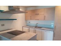 Amazing spacious two bedroom two bathroom apartment in Stratford, E15