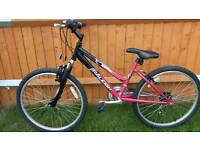 """Girls Raleigh 24""""wheel mountain bike just serviced ready to go"""