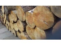 Wanted Trees, limbs, storm damaged for firewood/logs