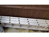 Abru extendable triple ladders