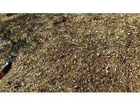 Free bark chippings.