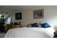 * * SHORT LET for April : Spacious Top Floor Double Room with En-Suit - for a Single Prof. * *