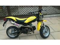 Stunning Very rare moto roma blazer bargain not to be missed