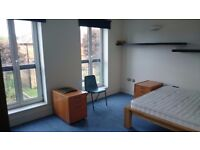 Double bedroom for couples or single £700pcm all bills include