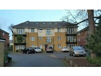 Private GFF wanted 1/2 bedrooms, Charminster/Wellington Road area. Superb refs