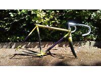Giant CFR - Carbon Road bike frame