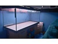 160L Marina Style Fish Tank and Cabinet.