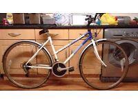 Raleigh pioneer 12 speed bike for sale
